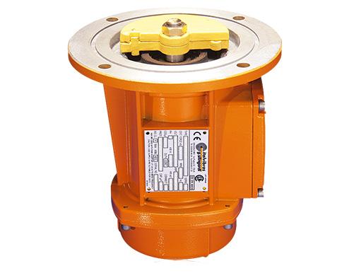 Italvibras MTF electric vibrators-centro