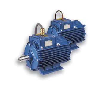 Flameproof - explosionproof motors for special applications-centro