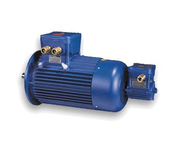 Inverter flameproof - explosionproof motors-centro